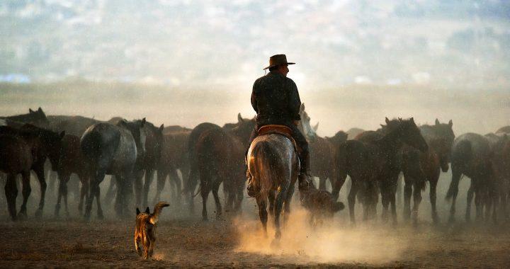 Fotoğraf Sanatçıları 37 – Arif Hikmet AKTÜRK